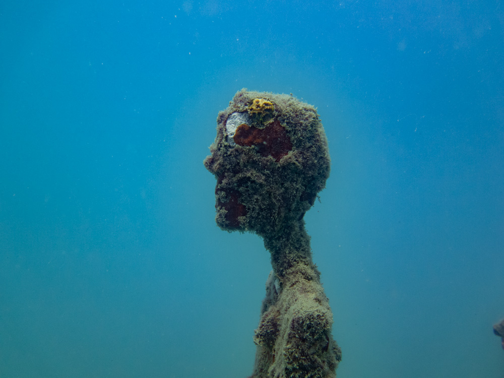 Ocean Utopia by Valérie Goutard (Val) the renowned French sculptor. Val has created underwater evolutionary sculpture titled Ocean Utopia and installed in Koh Tao in Thailand. It is an underwater sculptures site using art as a means to preserve the sea flora and fauna of coral reefs using coral planting and coral gardening technics