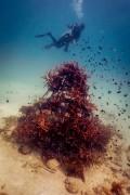 Underwater Structures